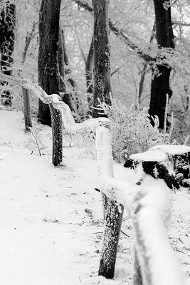 Winter am Bilsteinturm