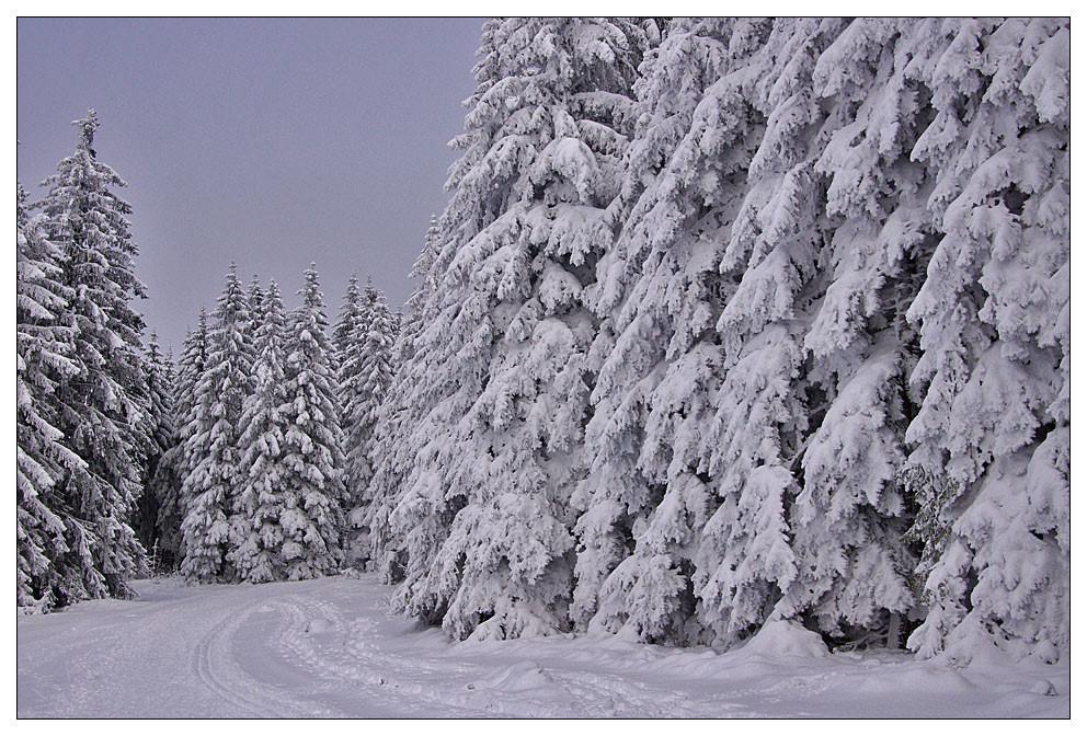 Winter am Brend