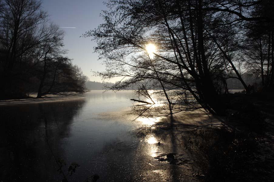 Winter am DeWitt See