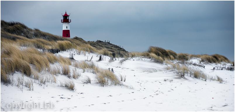 Winter am Ellenbogen 3