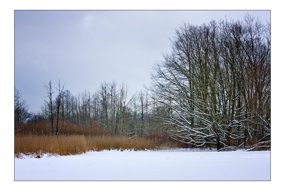 Winter am Fliess II