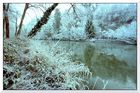 Winter am Fluß