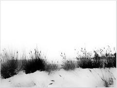 - winter am fluß IV -