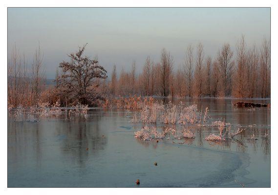 Winter am Geiseltalsee