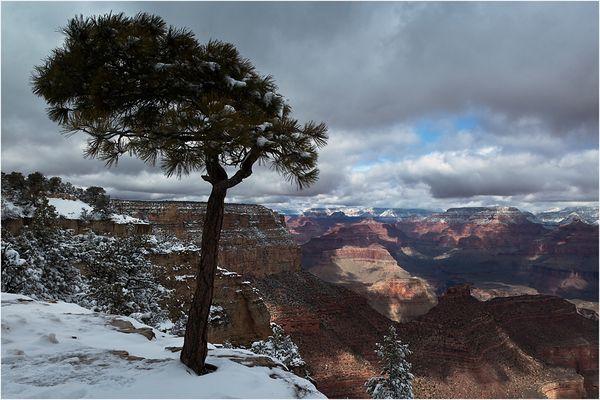 Winter am Grand Canyon