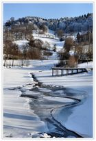 Winter am Guckaisee