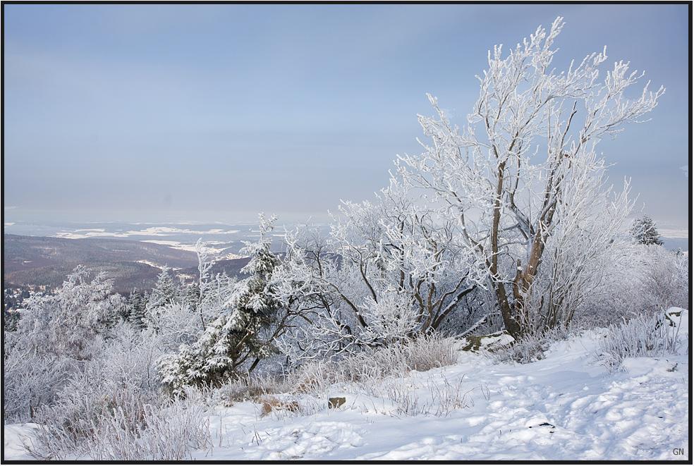Winter am Hausberg