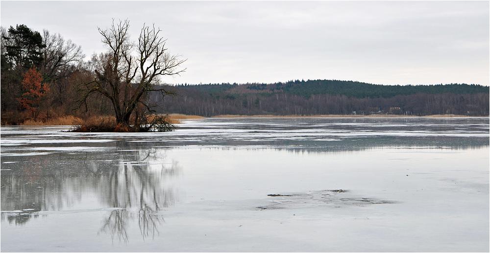 Winter am Kölpinsee 3