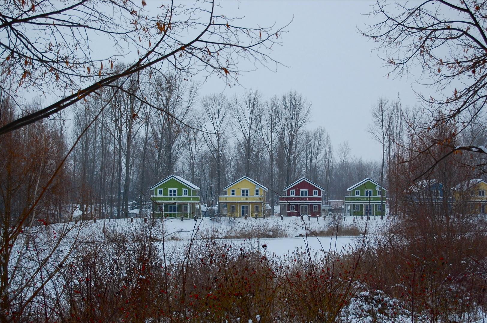 Winter am Kulkwitzer See