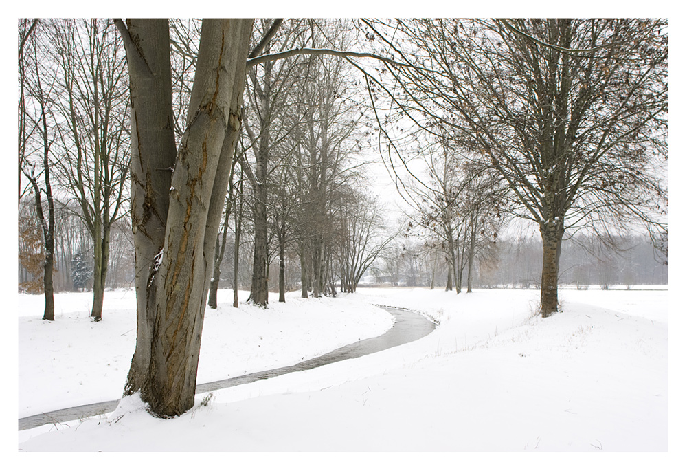 Winter am Laufbach