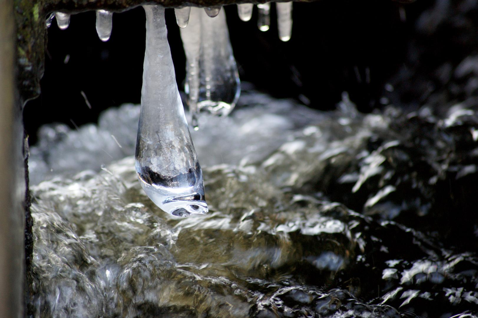 Winter am Mochowsee, Makro