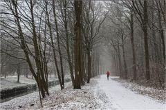Winter am Niederrhein (3)