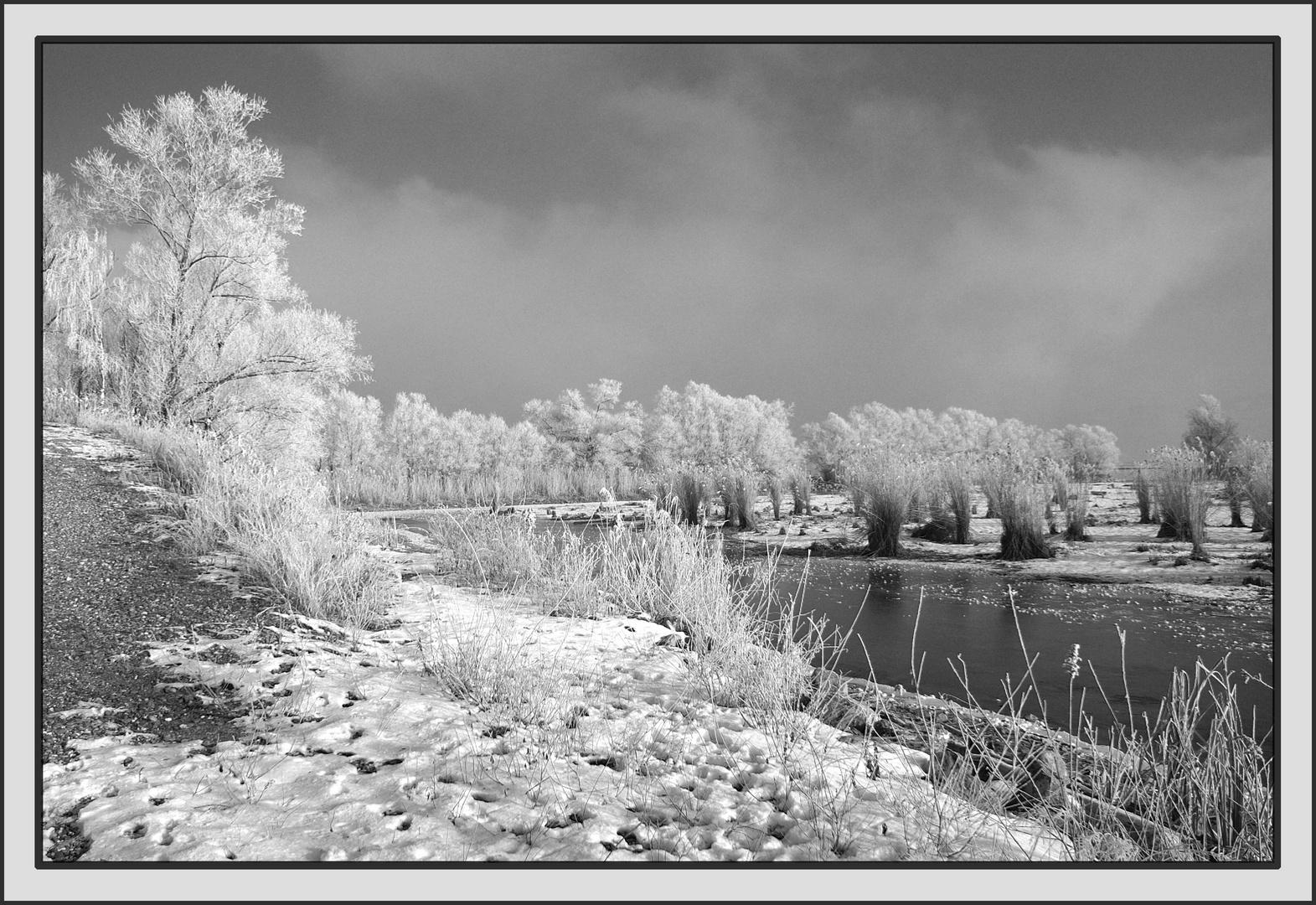 Winter am Schleienloch/ Hard