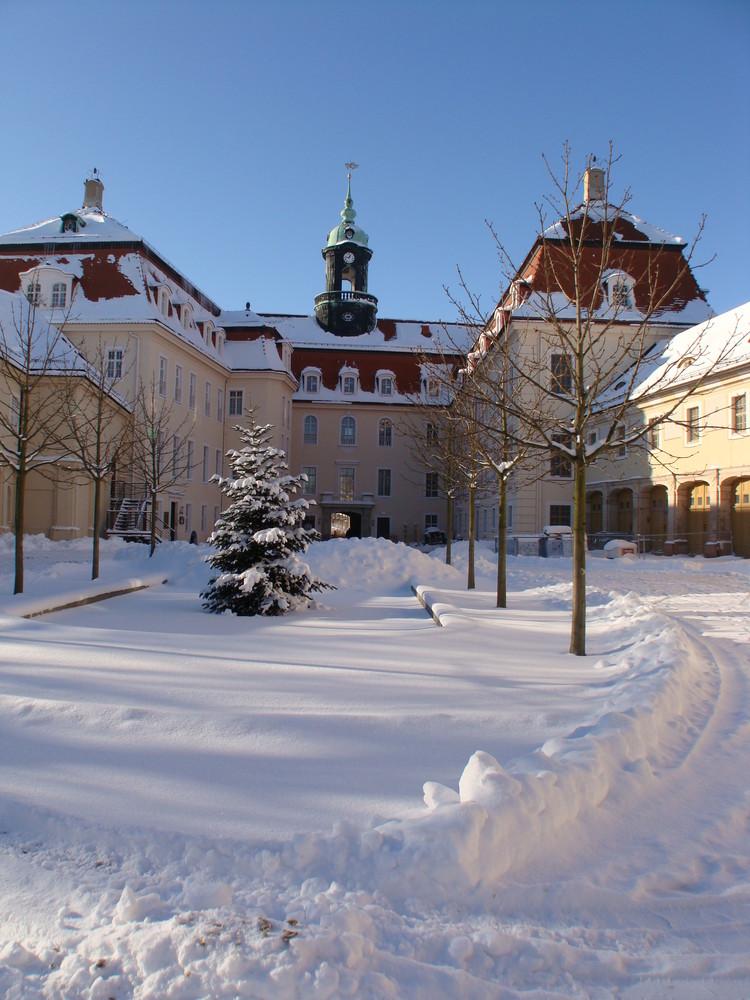 Winter am Schloss Lichtenwalde (3)