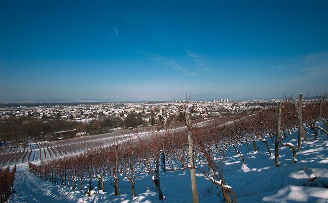 Winter am Schönberg