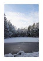 Winter am Schwarzen Teich