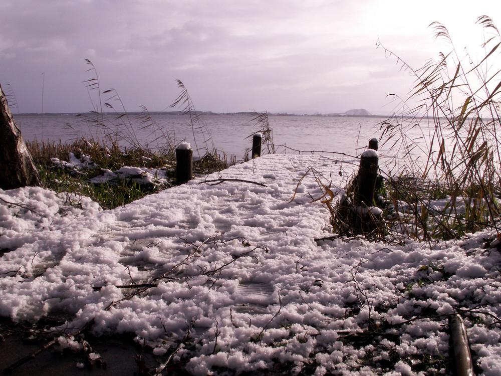 Winter am Steinhuder Meer