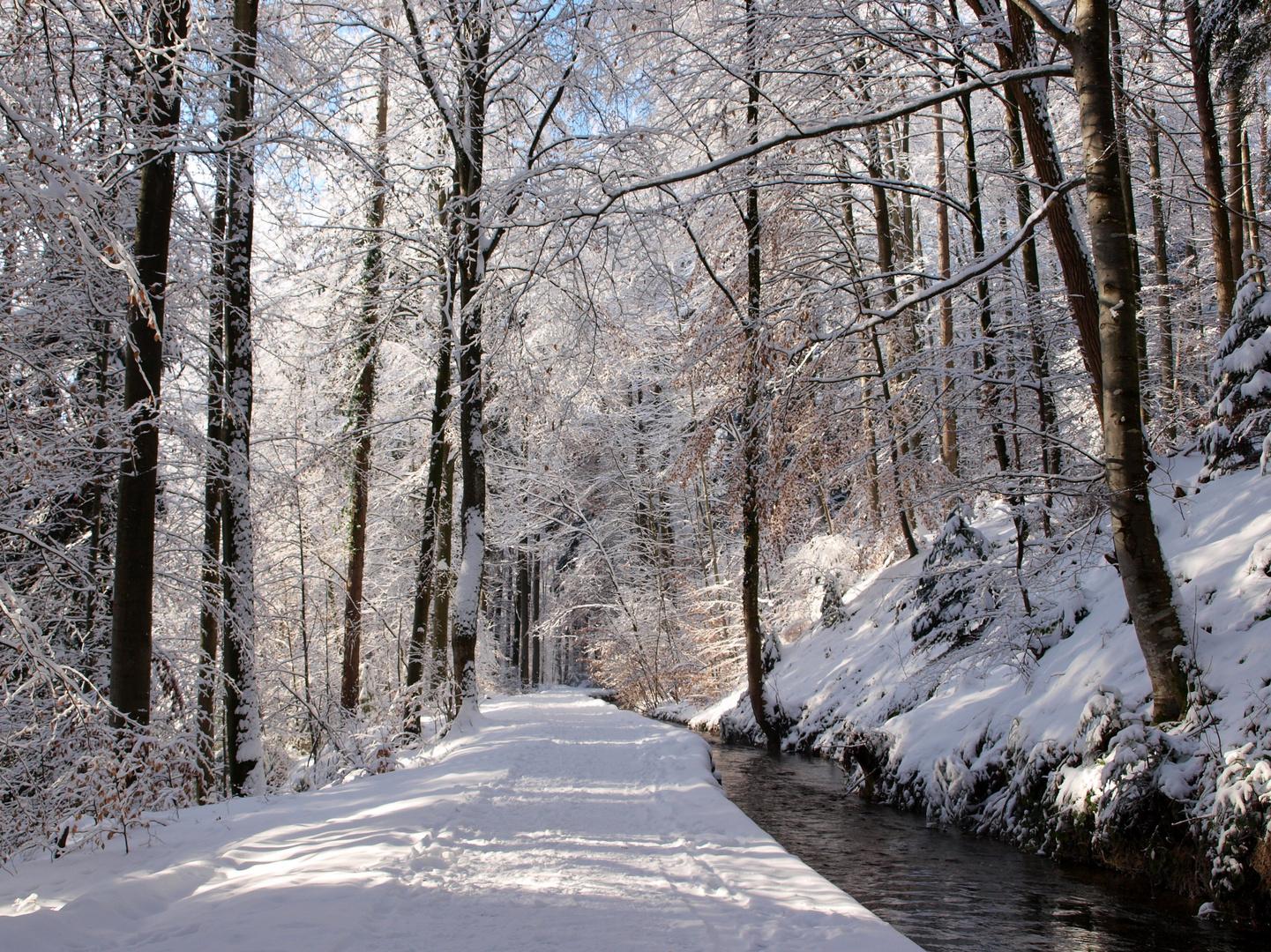 """Winter am """"Stillen Bach"""""""