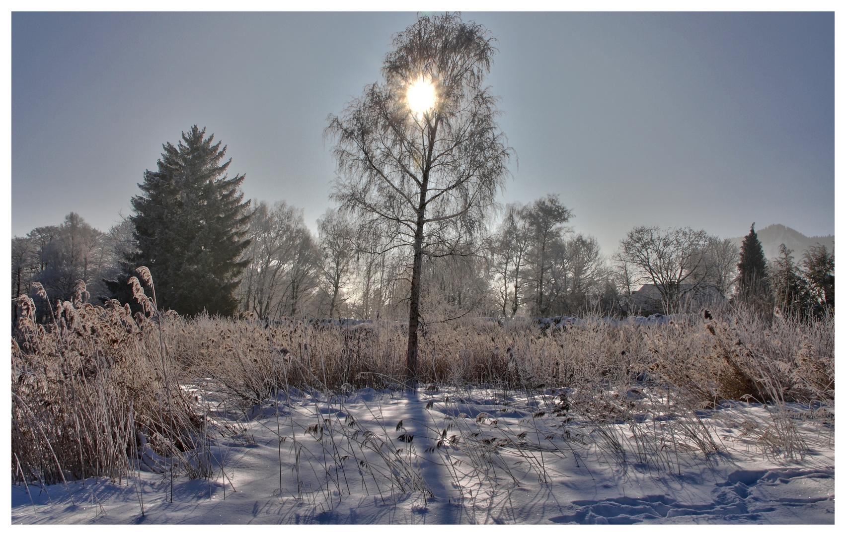 Winter am tegernsee