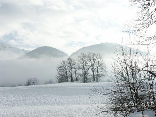Winter am wilden Kaiser