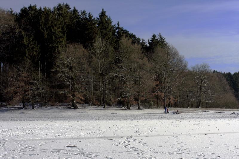 Winter an der Brucher_1