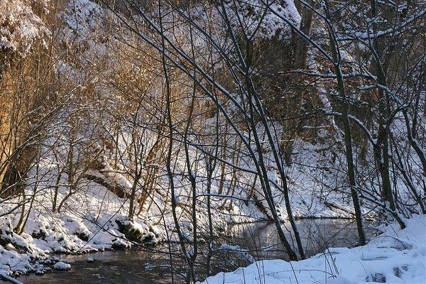 Winter an der Lauchert 4