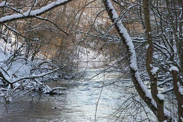 Winter an der Lauchert 5