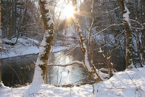 Winter an der Lauchert