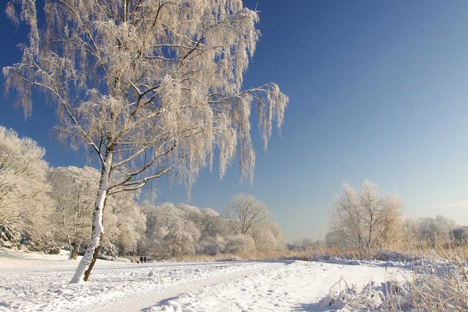 Winter an der Lesum #2