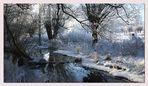 Winter an der Niers I