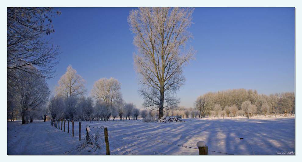 Winter an der Niers II