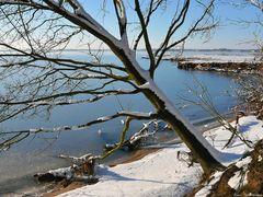 Winter an der Schlei - Foto Nr. 2