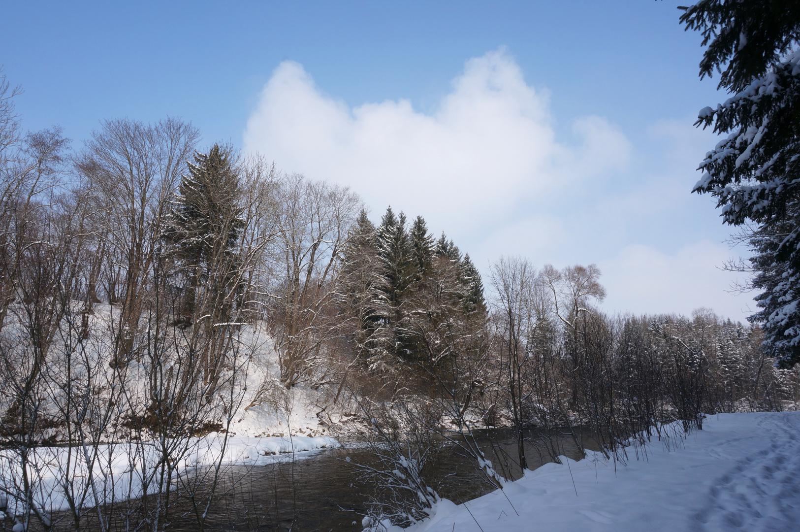 Winter an der Wertach