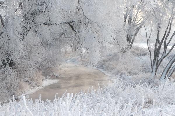 Winter an der Zorge