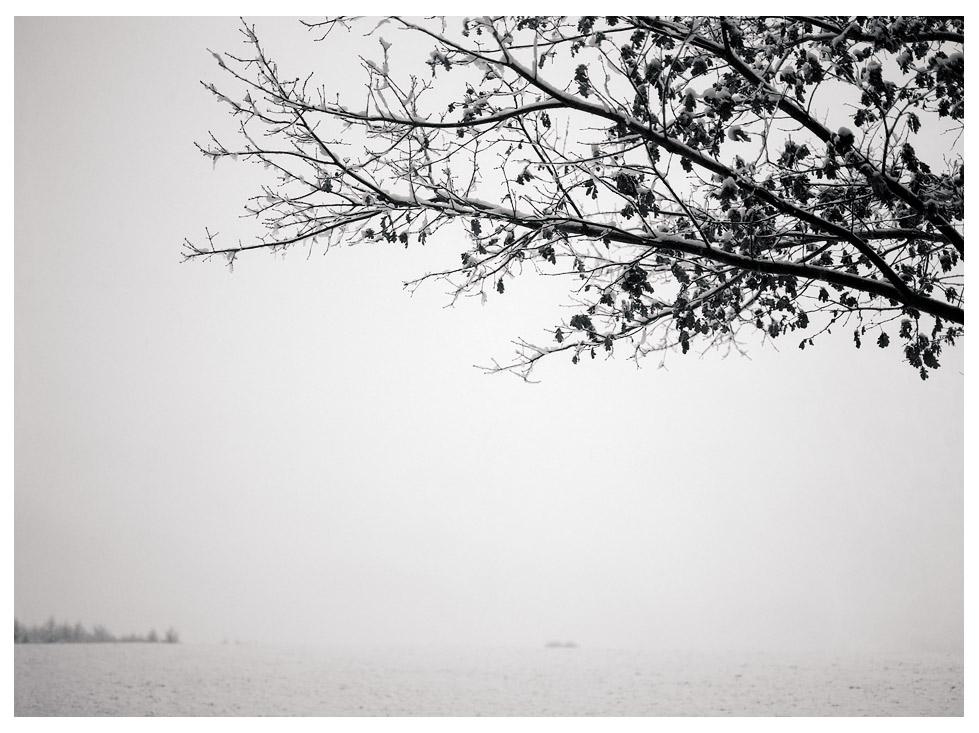 Winter ante portas