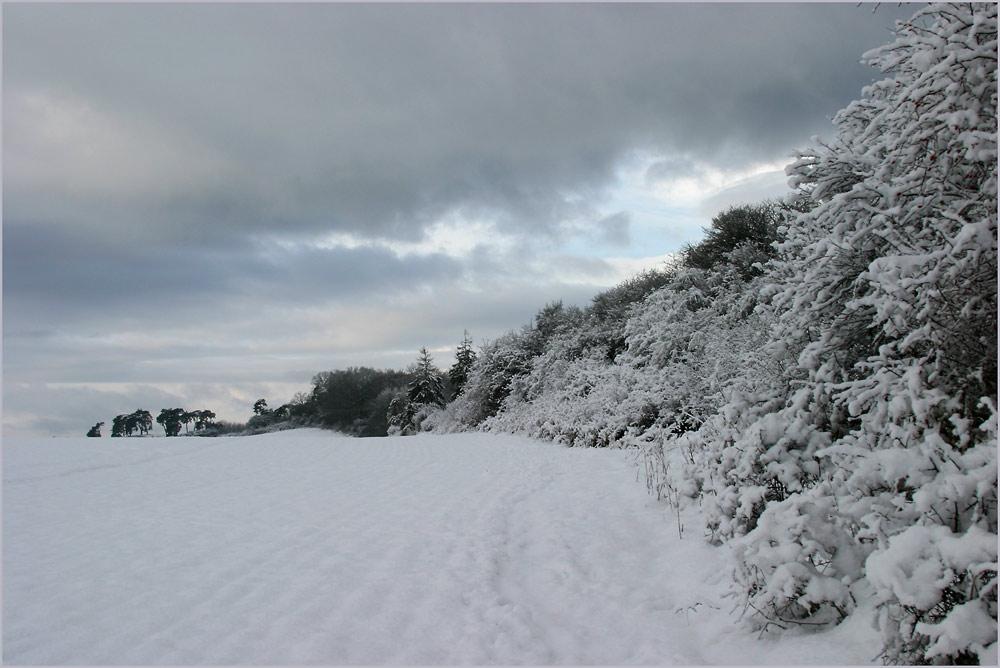 Winter auch in Vorpommern