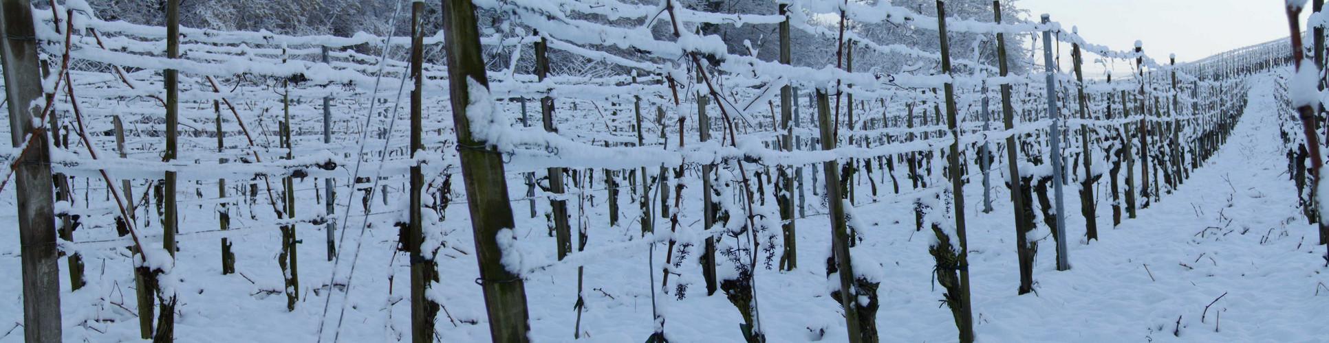 Winter auf breiter Front