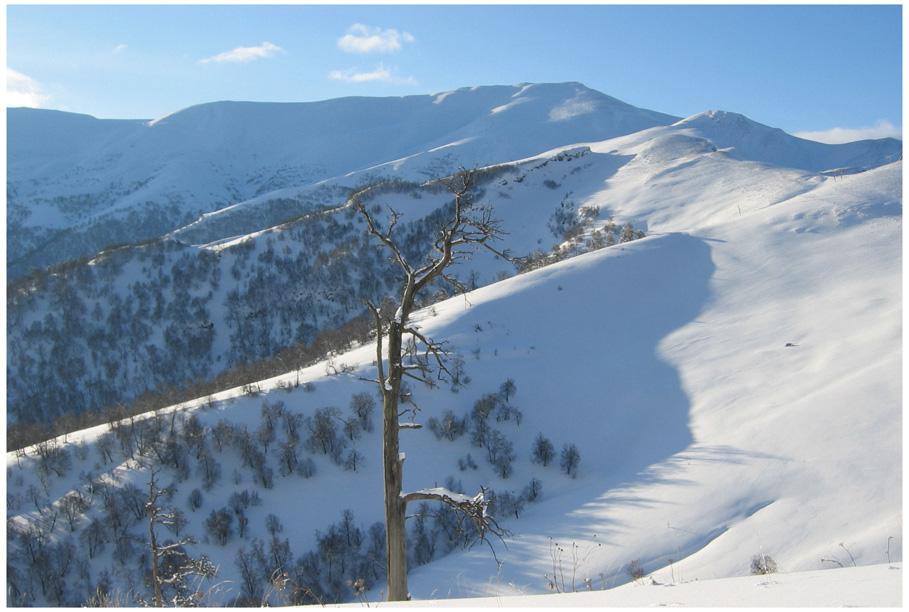 Winter auf dem Berg