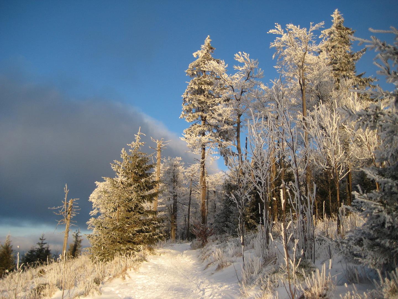 ***Winter auf dem Großen Inselsberg***
