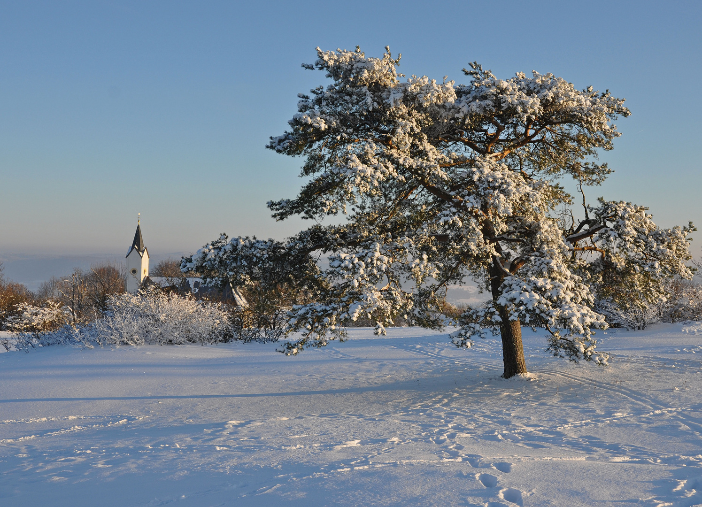 Winter auf dem Staffelberg 1