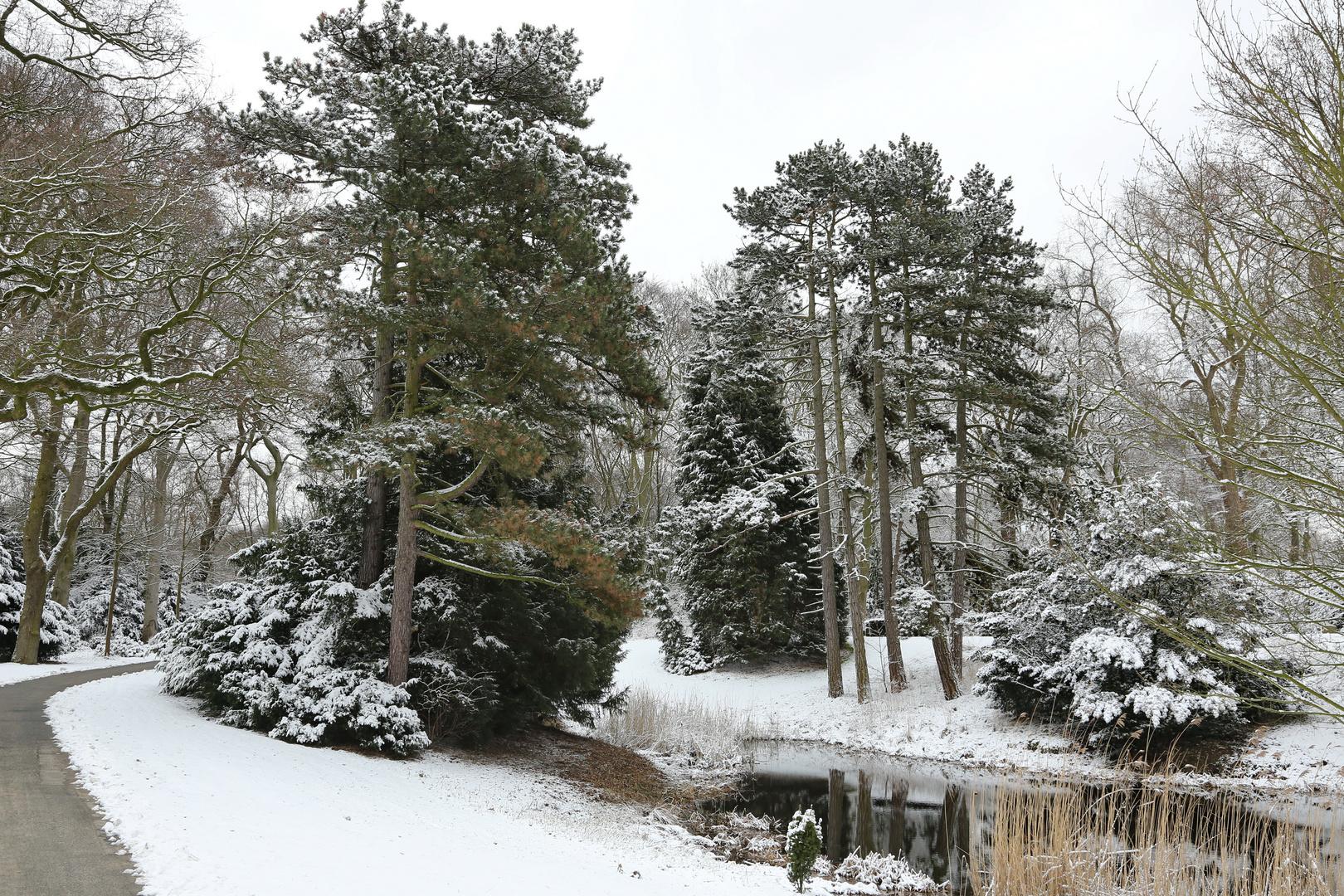 Winter auf dem Waller Friedhof