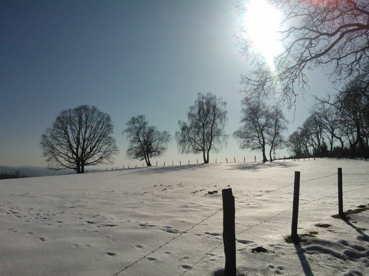 Winter auf dem Weg zum Frühling