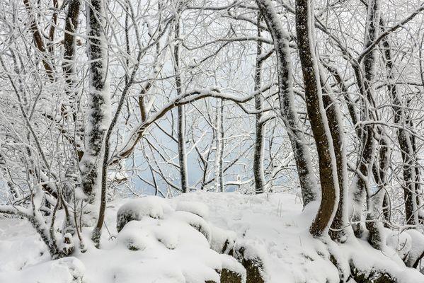 *Winter auf der Hohen Acht*