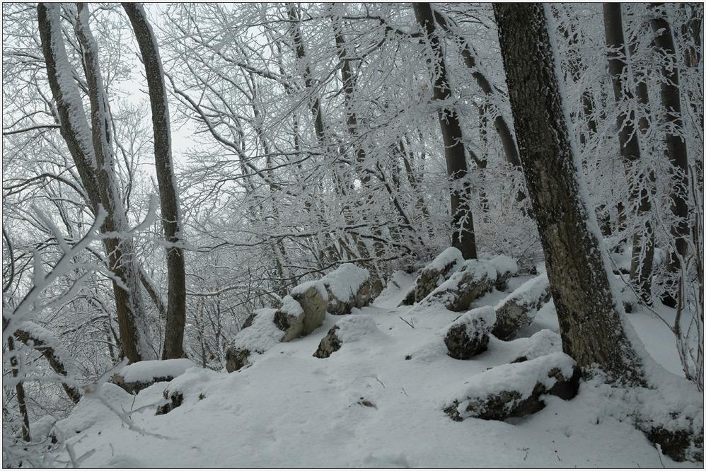 Winter auf der Lägern