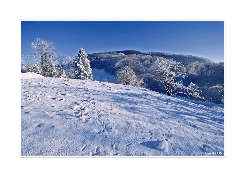 Winter auf der Staffelegg - Kt. AG - CH