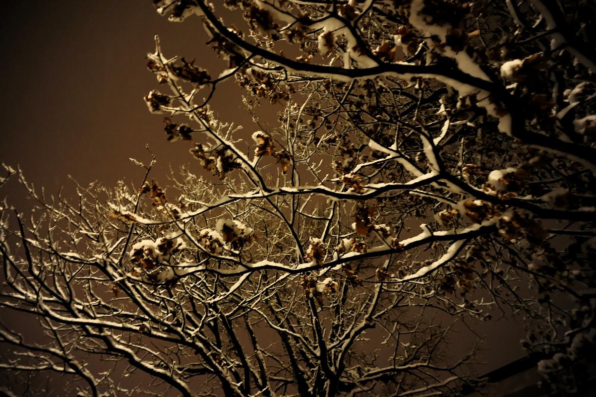 Winter auf der Straße, diesmal in Farbe...!