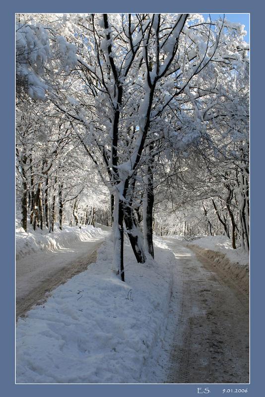 Winter auf der Wiener Höhenstraße 2