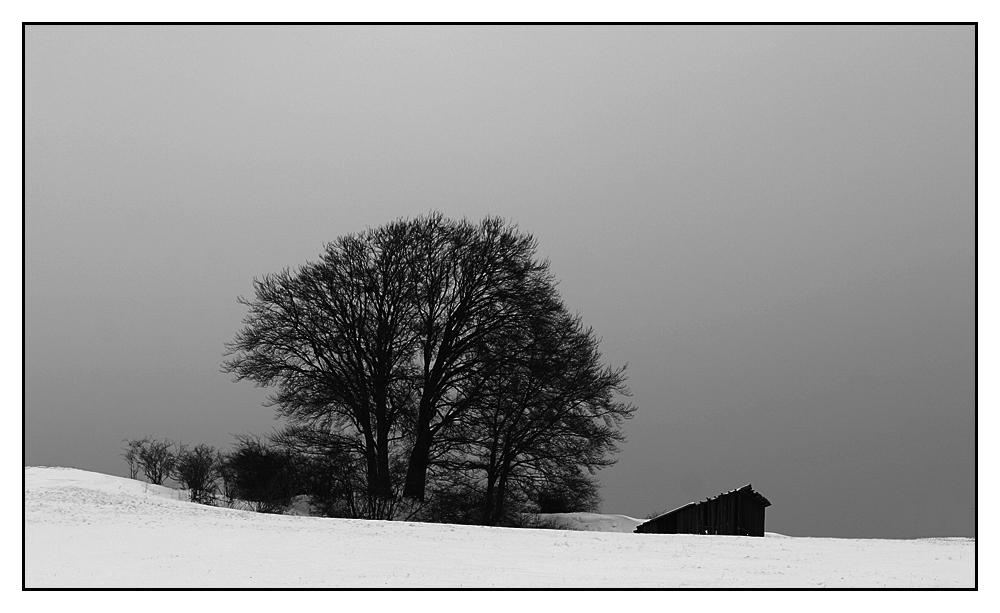 Winter bei Korbach