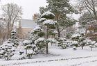 Winter bei uns