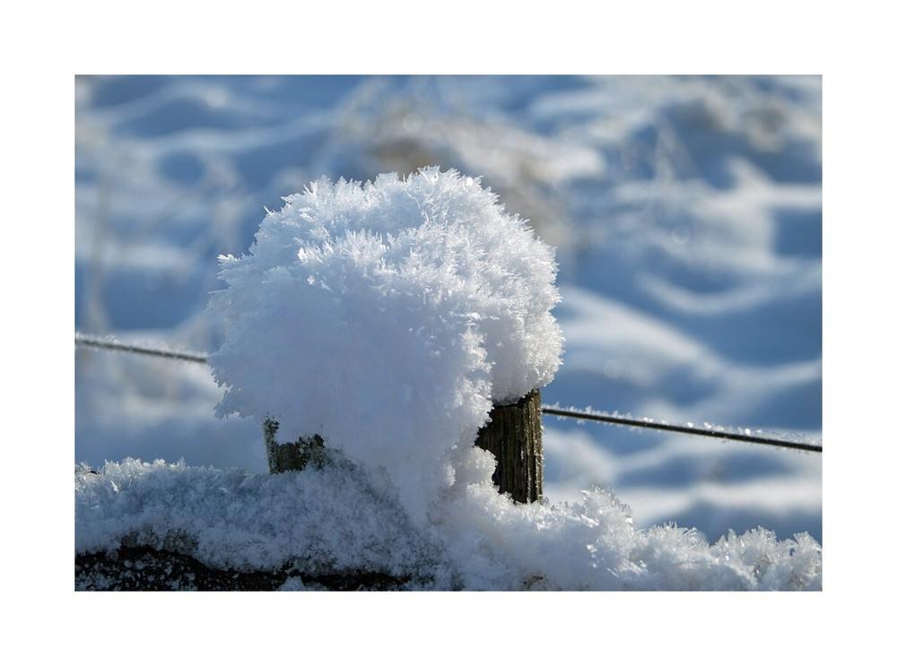 "Winter ""bizarr"" Teil III"